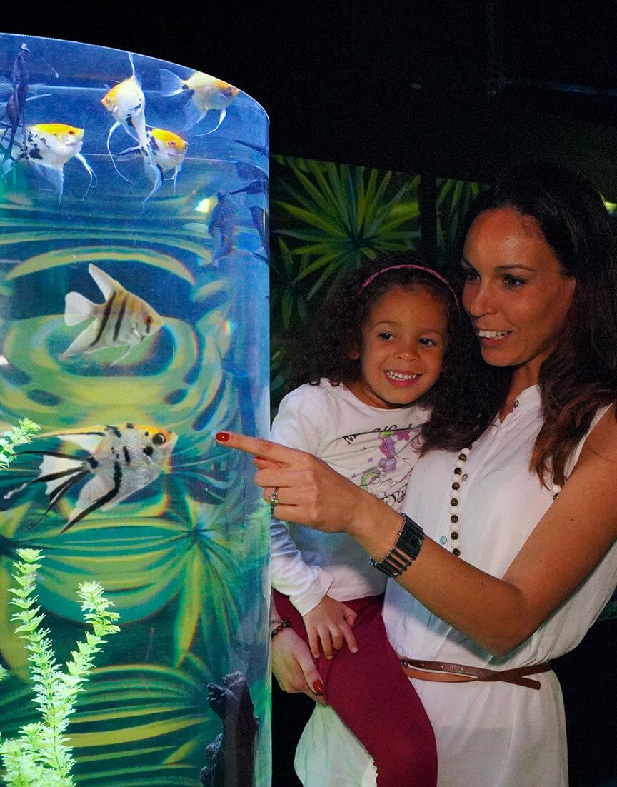 Biglietti Sea Life Aquarium Gardaland